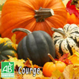 logo-panier-courge-ppg